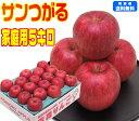 【9月りんご第1弾】【常温便送料無料】青森りんご サンつがる 家庭用 5キロもぎたて りんご 林檎 Apple早生品種の中で…