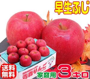 【常温便送料無料】10月りんご早く成熟する品種 早生ふじ 家庭用 3キロさっぱりと、ふじに似た風味♪訳あり11青森県からもぎたてを産地直送!りんご 林檎 毎日のフルーツやコールドプレ