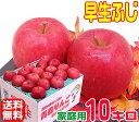 【常温便送料無料】10月りんご早く成熟する品種 早生ふじ 家庭用10キロさっぱりとした味わい!ふじに似た風味♪青森県…