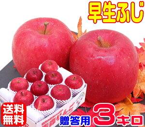 【常温便送料無料】10月りんご早く成熟する品種 早生ふじ 贈答用 3キロさっぱりと、ふじに似た風味♪青森県からもぎたてを産地直送!毎日のフルーツや贈り物にも♪11熟練スタッフが一粒