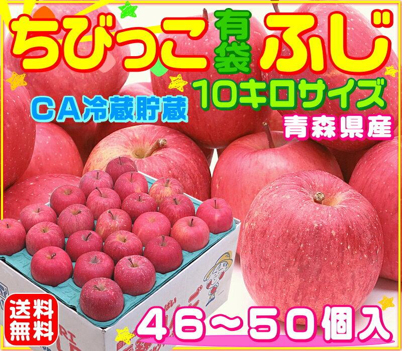 青森りんご ちびっこ有袋ふじ 10キロサイズ 【46個〜50個入】 小玉サイズ ふじりんご りんごの本場青森県から産地直送♪ 1箱にりんごが沢山♪食べ応え有! 毎日のジュースにもピッタリ♪ スムージーやコールドプレスジュース用にも♪