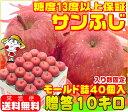 糖度13度以上保証 サンふじモールド贈答用10キロサンふじ ふじりんご りんご 林檎 Apple 入り数固定モールド詰め厳選…