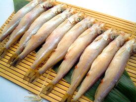 釧路の子持ちシシャモ(約15cm・約16g/本・10本入) 釧路まるか で作られた、身が大きくしっかりしていて風味があり淡白!お腹にもしっかりと張りがあり鮮度もとても良い!とても綺麗なシシャモです ししゃも・柳葉魚・北海道・機械乾燥