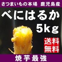 送料無料さつまいも5kg【紅はるか】甘くてしっとり新食感のさつまいも5Kg