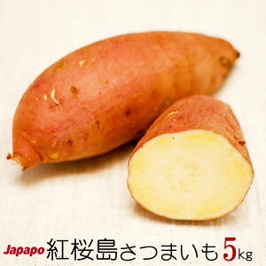 Japapo 紅桜島(シルクスイート) 5kg Mサイズ 鹿児島産