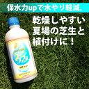 保水剤 【ゲインウォーター500ml】 夏の水やりを楽に 保水効果UP野菜や芝生に! 水不足防止 日本甜菜製糖