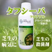 芝生中に発生するラージパッチ葉枯病フェアリーリング病春はげ症に効果のある殺菌剤タフシーバフロアブル