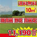 【送料無料】芝生10束!選べる3品種 姫高麗芝 高麗芝 野芝 10平米 高品質・新鮮 やっぱり人工芝より天然芝! ガーデニングDIY
