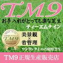 芝生!ティーエムナイン (高麗芝系) TM9 1平米  手入れが楽・簡単で見た目もキレイな芝生 楽天市場芝生ジャンル…