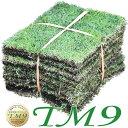 芝生 TM9 1平米 ティーエムナイン 鹿児島産 高麗芝 手入れが楽 簡単で見た目もキレイな芝生 楽天市場芝生ジャンル連続…