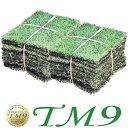 芝生 TM9 2平米 ティーエムナイン 鹿児島産 高麗芝 手入れが楽 簡単で見た目もキレイな芝生 楽天市場芝生ジャンル連続…