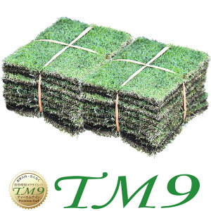 芝生 TM9 2平米 ティーエムナイン 鹿児島産 高麗芝 手入れが楽 簡単で見た目もキレイな芝生 楽天市場芝生ジャンル連続1位獲得 やっぱり人工芝より天然芝 ガーデニング DIY 美景観 省管理 少な