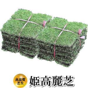 芝生 姫高麗芝 2平米 鹿児島産 やっぱり人工芝より天然芝 ガーデニング DIY【店頭受取対応商品】