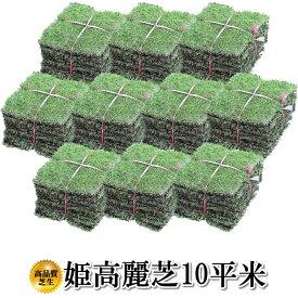 芝生 姫高麗芝 10平米 鹿児島産 送料無料(沖縄・北海道・離島は別途送料がかかります。)