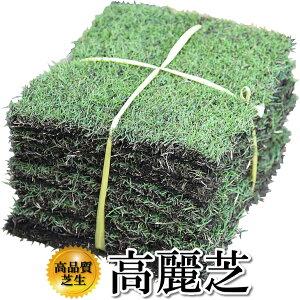 芝生 高麗芝 1平米 鹿児島産【店頭受取対応商品】