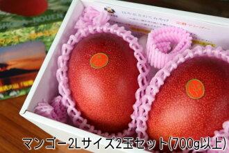 最好從鹿兒島縣鹿兒島市九州成熟的芒果蘋果芒果超級售超級售 10P01Jun14 的芒果 2 件 (500 克)