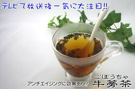 牛蒡茶お試しセット90g(約1ヶ月分) 送料無料 ごぼう茶 ゴボウ茶 おおすみファーム 鹿児島 九州 国産 1000円ポッキリ