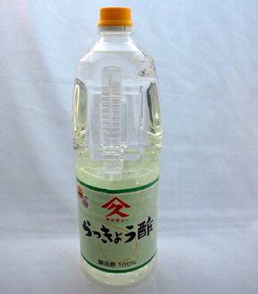 Seasonal goods scallion vinegar 1.8 l (3 kg) Kagoshima seasonings vinegar scallion vinegar Kubo brewing Ku 9 State Super Sale SUPER SALE 10P01Mar15