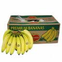 【箱売り】 レギュラーバナナ 1箱(12kg/5房) フィリピン産 お祭りなどのイベントに!! 【業務用・大量販売】…