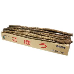 【箱売り】 ごぼう (ゴボウ・ゴボー) 1箱(約10kg/20〜30本) 茨城・鹿児島・国産【業務用・大量販売】【RCP】