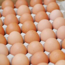 【箱売り】 輝黄卵 (玉子・たまご・卵・タマゴ) 1箱 福岡産・九州産(10kg、Mサイズ、約150〜160玉)九州 たまご 【業務用・大量販売】【RCP】