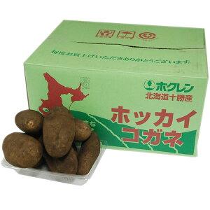 【箱売り】 じゃがいも(北海道メークイン) Lサイズ 1箱(約10kg) 茨城・北海道・青森産 【業務用・大量販売】