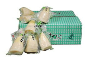 【箱売り】 たけのこ水煮 1箱(300g×30袋入り) 中国産  【業務用・大量販売】【RCP】