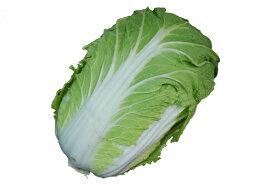 白菜(はくさい・ハクサイ) 1本  芯の部分は細切りにしてサラダで! 【長野・群馬・北海道産】