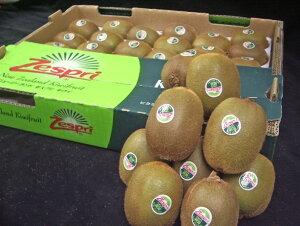 【ニュージーランド産】グリーンキウイ(キウイフルーツ・キウイ)  スプーンで食べるビタミンC! 1箱 (27-33玉) 【RCP】