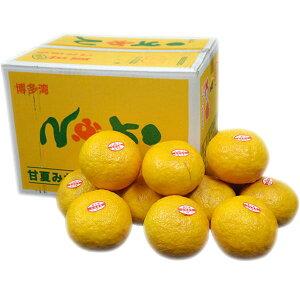 九州産 さっぱりとした味わい! 能古島甘夏(あまなつ・なつみかん)2L・L・Mサイズ 10kg 九州の安心・安全な果物! 福岡産 【RCP】