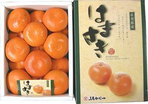 九州産 はまさき 15玉 2,5kg! 清見オレンジ・アンコール・マーコットを掛け合わせたグルメみかん。 九州の安心・安全な果物! 九州・唐津産 【RCP】