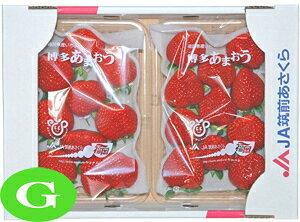 【いちご】 九州産 あまおう G(グランデ) 1箱(2パック) 福岡産 九州の安心・安全な果物! 【RCP】