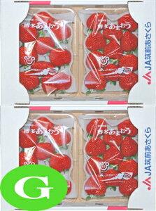 【いちご】 九州産 あまおう G(グランデ) 2箱(4パック) 福岡産 九州の安心・安全な果物! 【RCP】