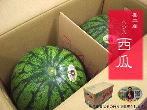 九州産 ハウス西瓜(スイカ・すいか・西瓜)九州の安心・安全な果物! 九州・熊本県産 2Lサイズ 2玉入り 1箱  この時期に食べれる贅沢をいかがですか? 【RCP】