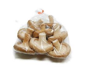 九州産 生椎茸(椎茸・シイタケ・しいたけ) 約100g(4枚〜10枚入り) お鍋には欠かせないキノコですね。 九州の安心・安全な野菜! 【長崎・大分・福岡・九州】