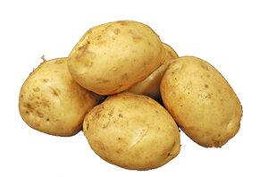 馬鈴薯(男爵・じゃがいも) 約1kg 青森・北海道