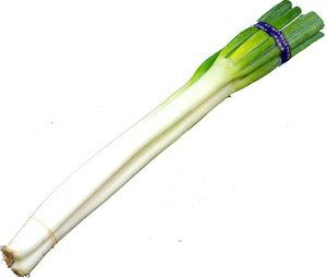 九州産 白ねぎ(シロネギ・白葱・長ネギ) 2〜3本 九州の安心・安全な野菜! 【大分産・九州】