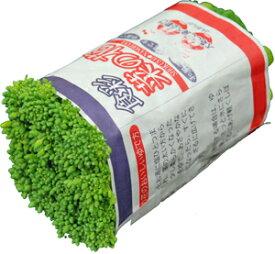 菜の花(なのはな・菜花・なばな)  ビタミンCの含有量は野菜の中でもトップクラス! 1束 約200g 九州・大分・長崎・福岡産他・・徳島など