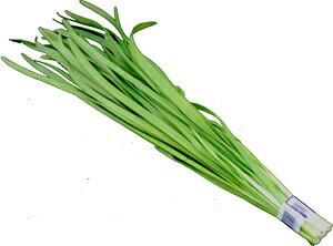 九州産 にら(ニラ・韮) 冷え性の緩和や整腸に効果的な野菜! 1把 九州の安心・安全な野菜! 【九州・大分・熊本産】