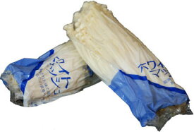 九州産 えのき茸(エノキ・榎木)  100g×2袋 九州の安心・安全な野菜! 【九州・大分・福岡・長崎】