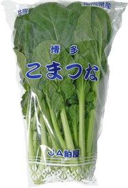 九州産 野菜 小松菜(こまつな・コマツナ) 骨を丈夫に! 1袋  約200g  九州の安心・安全な野菜! 【長崎・福岡・九州】