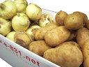 お得 野菜セット(根菜類セット) (内容 人参1kg・玉ねぎ2kg・メークイン2kg) 1箱(5kg) 北海道・九州産 常備野菜として!やさいセット!