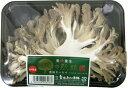 九州産 舞茸(マイタケ・まいたけ)ぷっりっと肉厚で歯ごたえがいい! 1パック 九州の安心・安全な野菜! 【福岡…