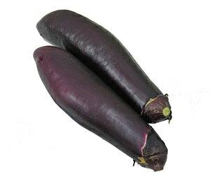 【赤なす】 肥後の赤ナス(なす・茄子・なすび・ナスビ) 10本 実が柔らかく種がほとんどありません! 九州・熊本産