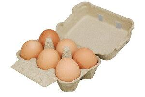 【卵】 九州産 輝黄卵 (玉子・たまご・卵・タマゴ) 6玉パック 福岡産・九州産 九州 たまご