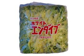 人気の西洋野菜!  ホワイトエンダイブ(別名シコレ) 1パック