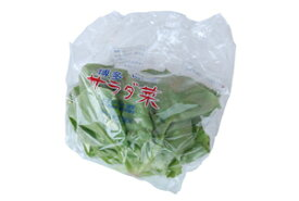 九州産 サラダ菜(バターヘッド) 1袋 サラダ野菜 九州の安心・安全な野菜! 【九州・福岡産】