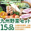 【あす楽】【セット】 おまかせ 九州野菜セット 15品 旬の野菜詰め合せ・おまかせ詰め合わせセット! 人気のセッ…