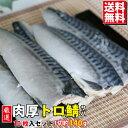 【SALE】厳選 肉厚トロ鯖 訳あり 10枚入り(1枚 約140g)【送料無料 鯖 さば 塩鯖 サバ 塩サバ】 魚真