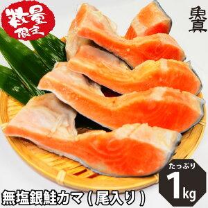 数量限定 銀鮭 カマ (尾入り) 1kg 無塩 かま さけ 鮭 加熱用 お徳用 業務用 訳あり 魚真